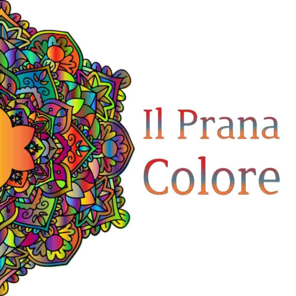 Questa immagine ha l'attributo alt vuoto; il nome del file è pranic-liv-2-min-1-1024x1024.jpg